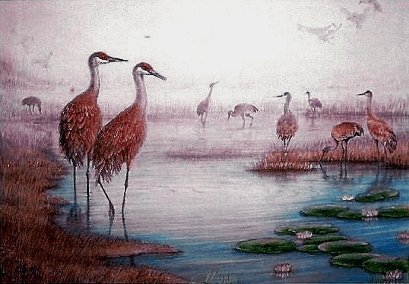 Sandhills in a Canal